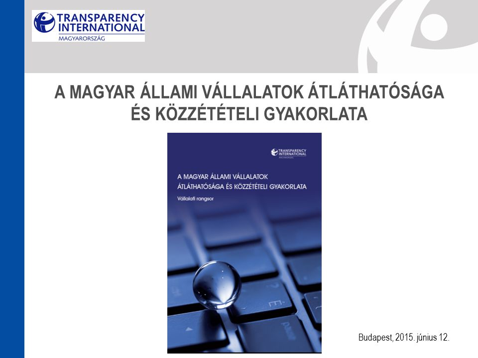 Átfogó kép arról, hogy jelenleg milyen az állami cégek közzétételi gyakorlata és átláthatóságuk mértéke.