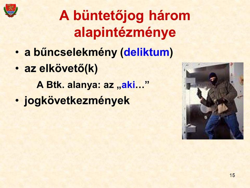 """15 A büntetőjog három alapintézménye a bűncselekmény (deliktum) az elkövető(k) A Btk. alanya: az """"aki…"""" jogkövetkezmények"""