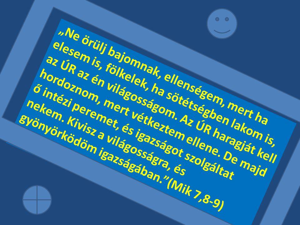"""""""Ne örülj bajomnak, ellenségem, mert ha elesem is, fölkelek, ha sötétségben lakom is, az ÚR az én világosságom. Az ÚR haragját kell hordoznom, mert vé"""