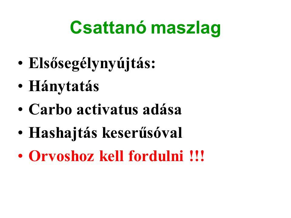 Csattanó maszlag Elsősegélynyújtás: Hánytatás Carbo activatus adása Hashajtás keserűsóval Orvoshoz kell fordulni !!!