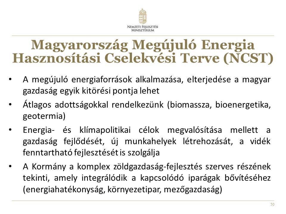 50 A megújuló energiaforrások alkalmazása, elterjedése a magyar gazdaság egyik kitörési pontja lehet Átlagos adottságokkal rendelkezünk (biomassza, bioenergetika, geotermia) Energia- és klímapolitikai célok megvalósítása mellett a gazdaság fejlődését, új munkahelyek létrehozását, a vidék fenntartható fejlesztését is szolgálja A Kormány a komplex zöldgazdaság-fejlesztés szerves részének tekinti, amely integrálódik a kapcsolódó iparágak bővítéséhez (energiahatékonyság, környezetipar, mezőgazdaság) Magyarország Megújuló Energia Hasznosítási Cselekvési Terve (NCST)