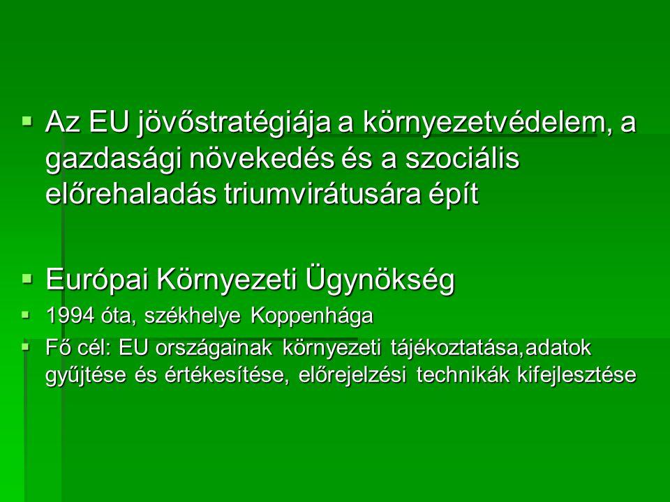  Az EU jövőstratégiája a környezetvédelem, a gazdasági növekedés és a szociális előrehaladás triumvirátusára épít  Európai Környezeti Ügynökség  1994 óta, székhelye Koppenhága  Fő cél: EU országainak környezeti tájékoztatása,adatok gyűjtése és értékesítése, előrejelzési technikák kifejlesztése