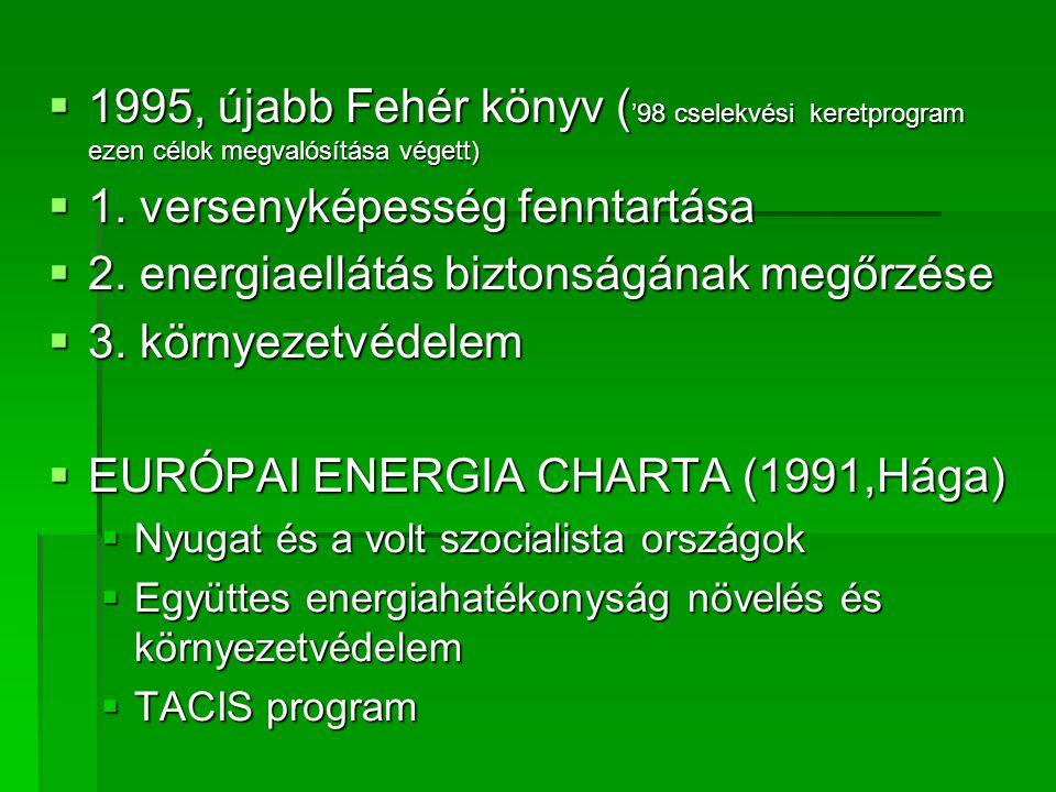  1995, újabb Fehér könyv ( '98 cselekvési keretprogram ezen célok megvalósítása végett)  1.