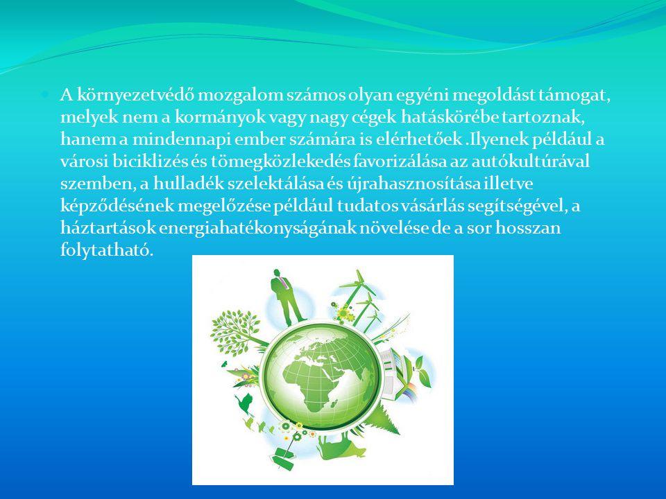 A környezetvédő mozgalom számos olyan egyéni megoldást támogat, melyek nem a kormányok vagy nagy cégek hatáskörébe tartoznak, hanem a mindennapi ember