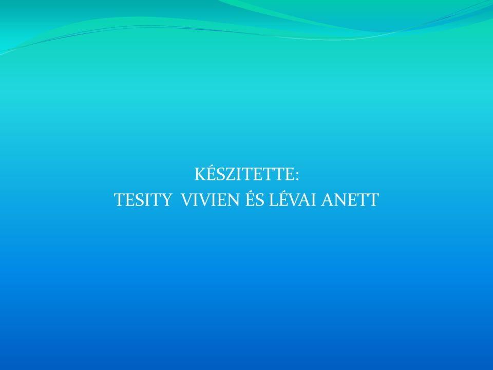 KÉSZITETTE: TESITY VIVIEN ÉS LÉVAI ANETT