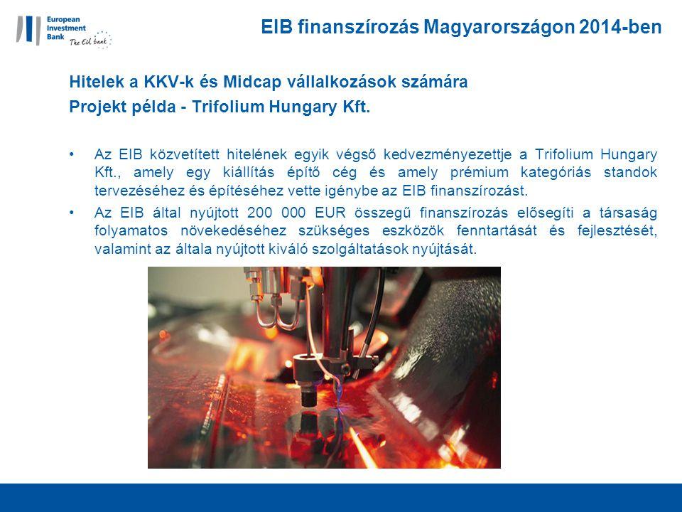 EIB finanszírozás Magyarországon 2014-ben Hitelek a KKV-k és Midcap vállalkozások számára Projekt példa - Trifolium Hungary Kft.
