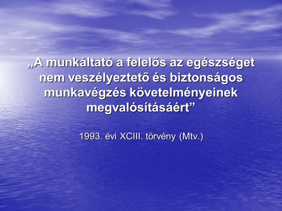 """""""A munkáltató a felelős az egészséget nem veszélyeztető és biztonságos munkavégzés követelményeinek megvalósításáért"""" 1993. évi XCIII. törvény (Mtv.)"""