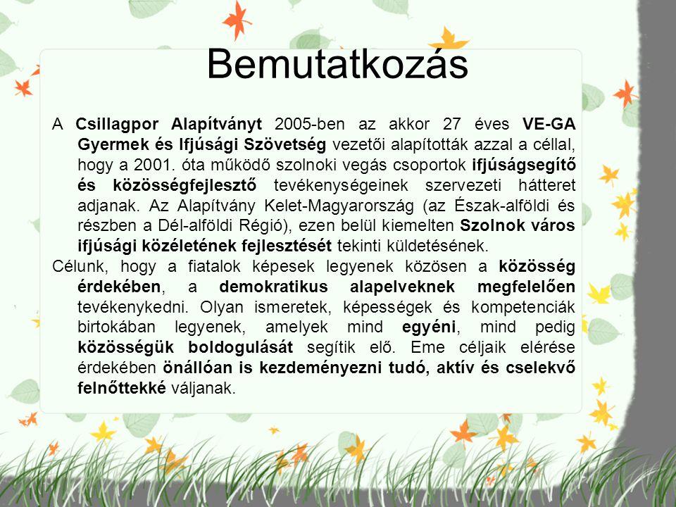 Fogyatékos személyek esélyegyenlőségét segítő programok Családi nap szervezése Besenyszögön a Bice Bóca Alapítvány sérült gyermekeket nevelő családok klubja számára (2011) A Bice Bóca Alapítvány által sérült gyermekeket nevelő családoknak szervezett nyári táborban kézműves foglalkozás tartása (2011) Fogyatékos személyek országos, megyei és helyi szervezeteinek a fogyatékos személyek esélyegyenlőségét elősegítő szakmai programjainak és szolgáltatásainak támogatása (2011) Sérült és ép gyerekeket nevelő családoknak szerveztünk közös táborozási lehetőséget Szentes-Magyartésen a VE- GA Gyermek és Ifjúsági Szövetséggel együttműködve.