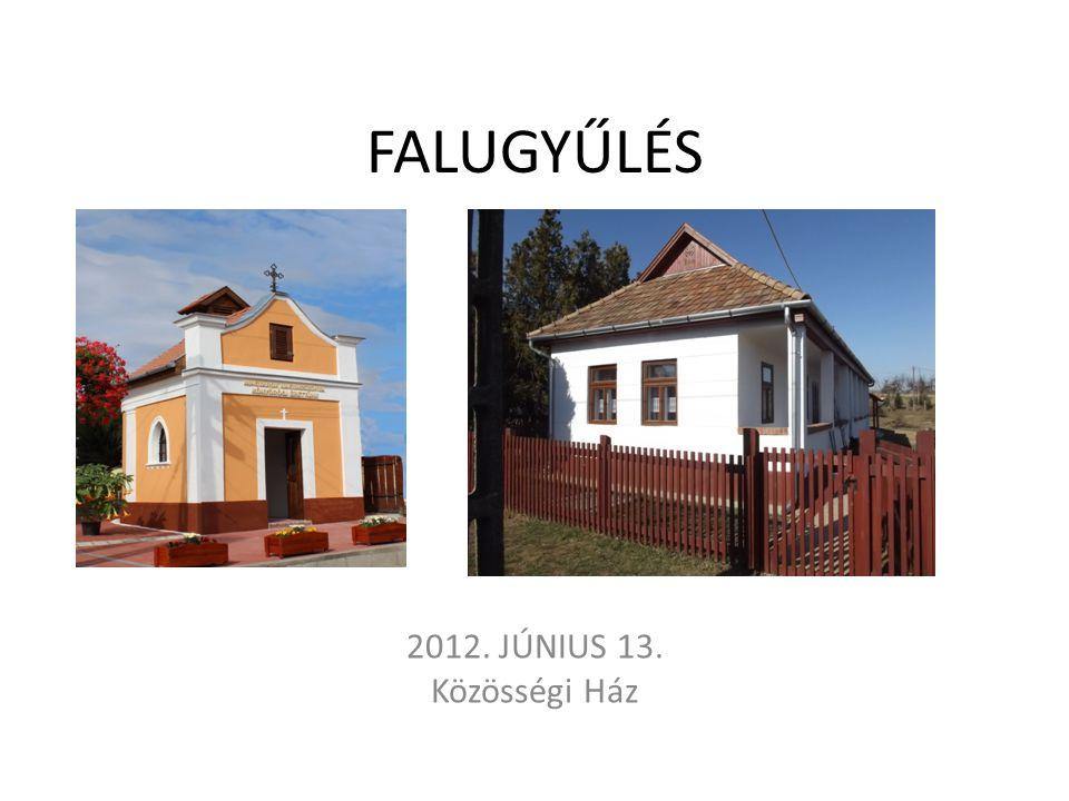 FALUGYŰLÉS 2012. JÚNIUS 13. Közösségi Ház