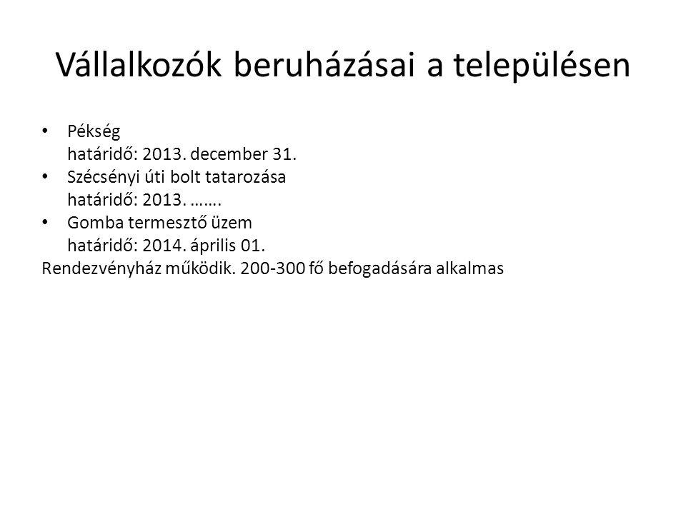 Vállalkozók beruházásai a településen Pékség határidő: 2013. december 31. Szécsényi úti bolt tatarozása határidő: 2013. ……. Gomba termesztő üzem határ