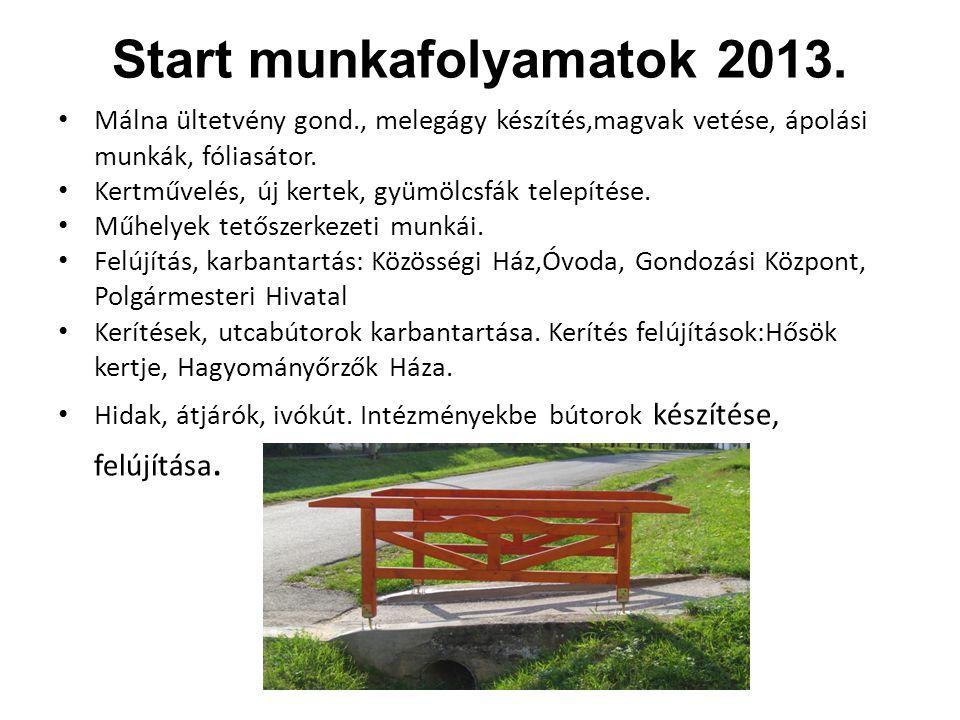 Start munkafolyamatok 2013. Málna ültetvény gond., melegágy készítés,magvak vetése, ápolási munkák, fóliasátor. Kertművelés, új kertek, gyümölcsfák te