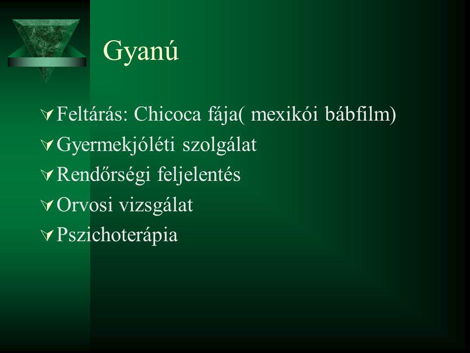 Gyanú  Feltárás: Chicoca fája( mexikói bábfilm)  Gyermekjóléti szolgálat  Rendőrségi feljelentés  Orvosi vizsgálat  Pszichoterápia