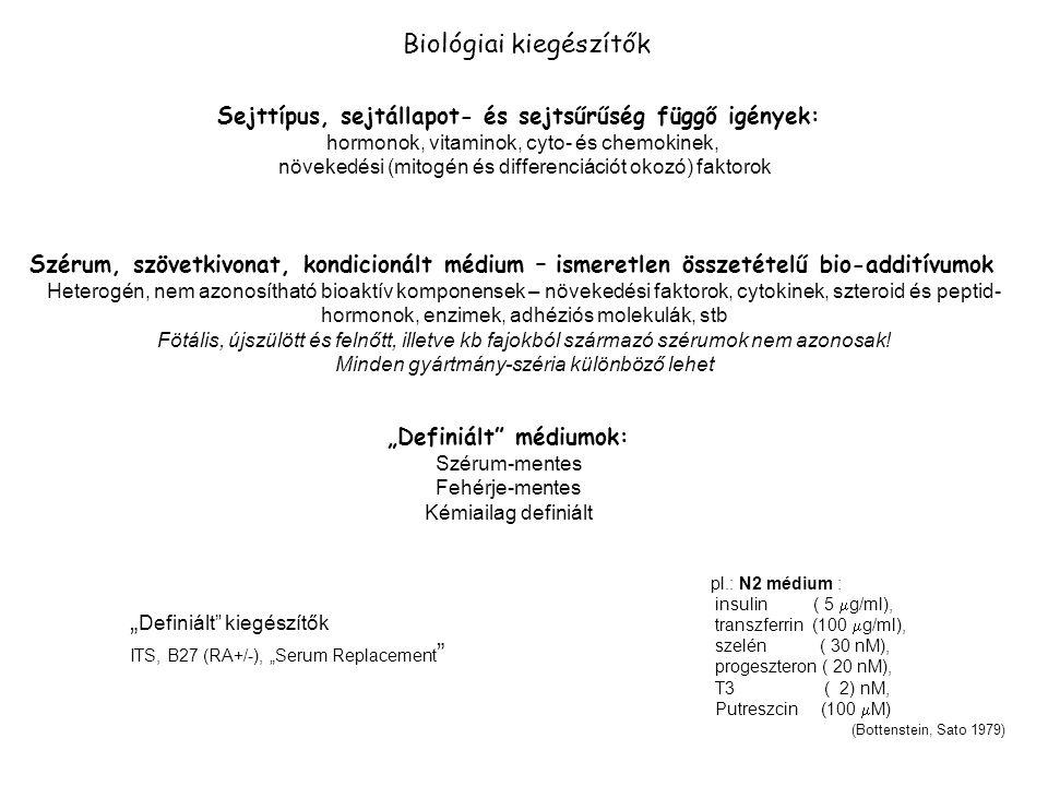 Biológiai kiegészítők Szérum, szövetkivonat, kondicionált médium – ismeretlen összetételű bio-additívumok Heterogén, nem azonosítható bioaktív komponensek – növekedési faktorok, cytokinek, szteroid és peptid- hormonok, enzimek, adhéziós molekulák, stb Fötális, újszülött és felnőtt, illetve kb fajokból származó szérumok nem azonosak.