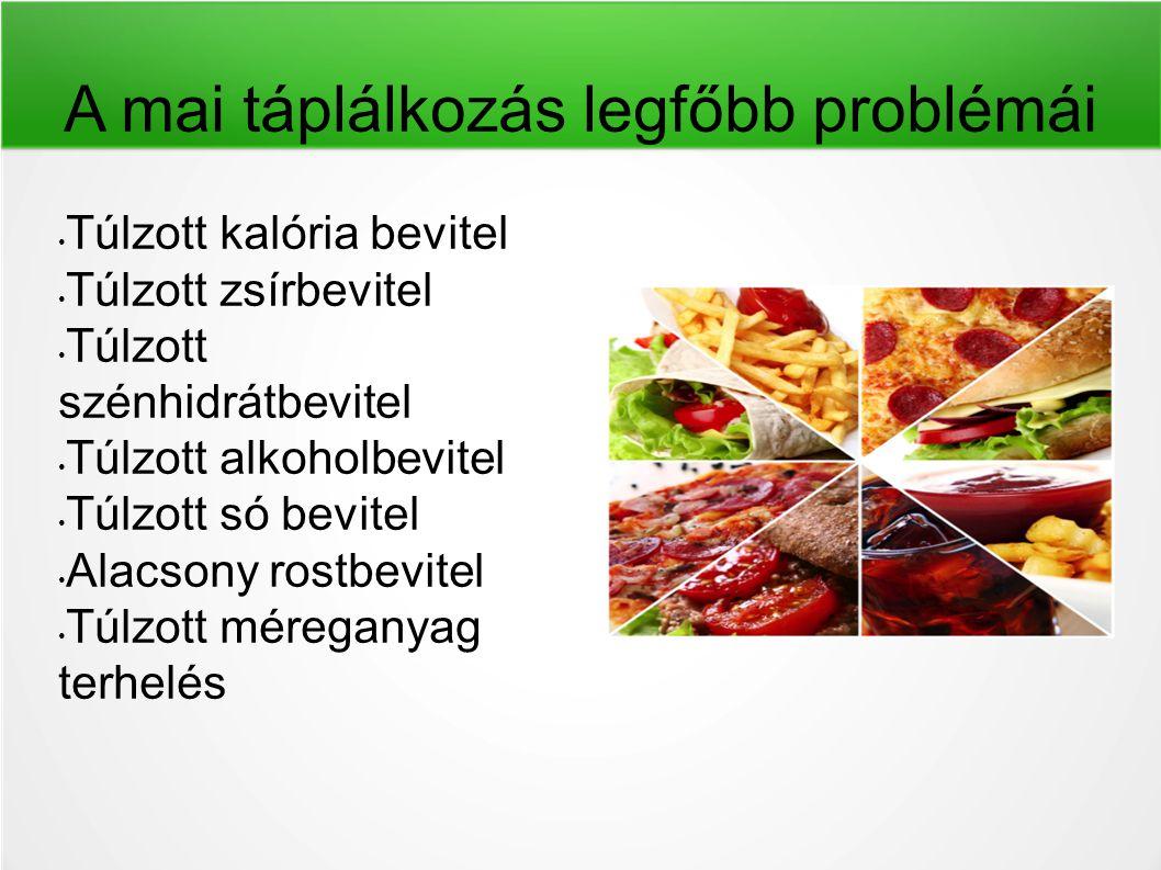 A mai táplálkozás legfőbb problémái Túlzott kalória bevitel Túlzott zsírbevitel Túlzott szénhidrátbevitel Túlzott alkoholbevitel Túlzott só bevitel Al