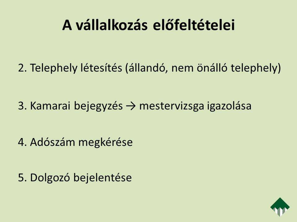 Adózás Kettős adóztatás elkerülése (belföldi illetékesség – telephely) 2011.