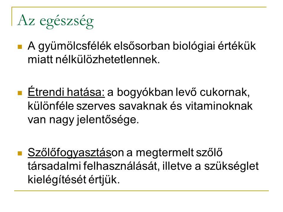 Magyar Bor Akadémia Megalakulására 1992.