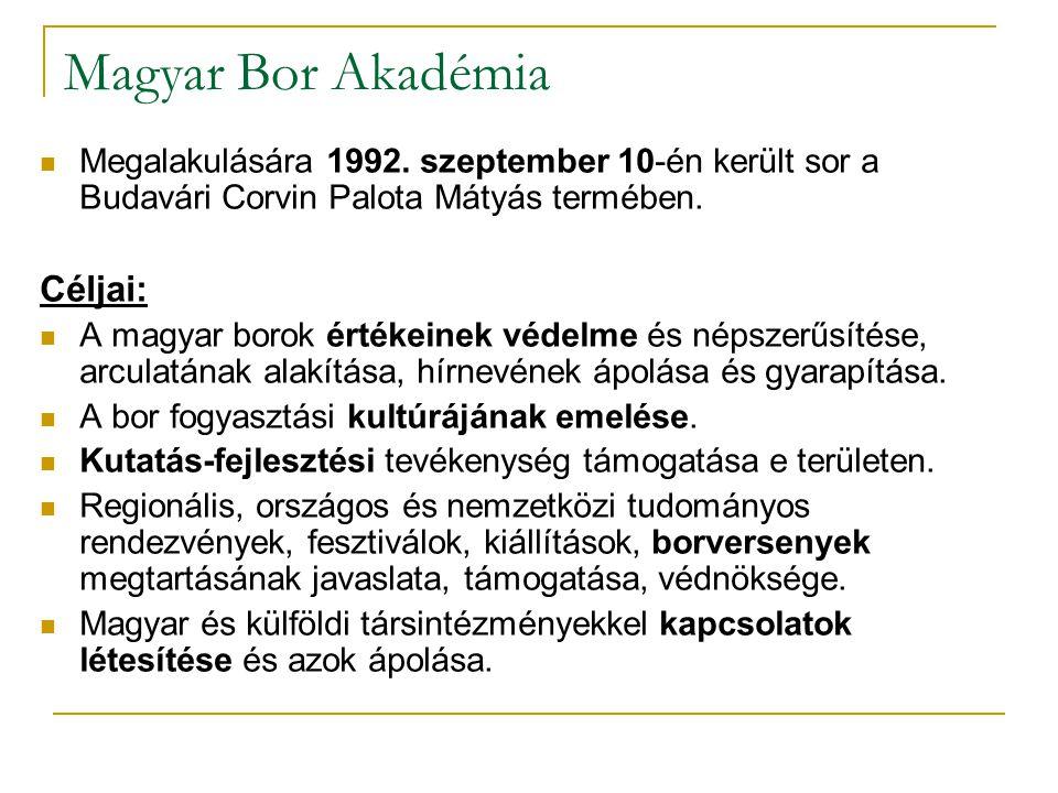 Magyar Bor Akadémia Megalakulására 1992. szeptember 10-én került sor a Budavári Corvin Palota Mátyás termében. Céljai: A magyar borok értékeinek védel