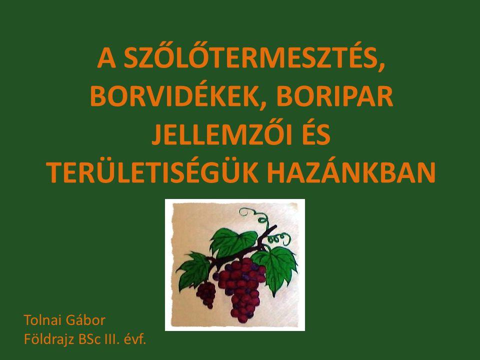 A SZŐLŐTERMESZTÉS, BORVIDÉKEK, BORIPAR JELLEMZŐI ÉS TERÜLETISÉGÜK HAZÁNKBAN Tolnai Gábor Földrajz BSc III. évf.