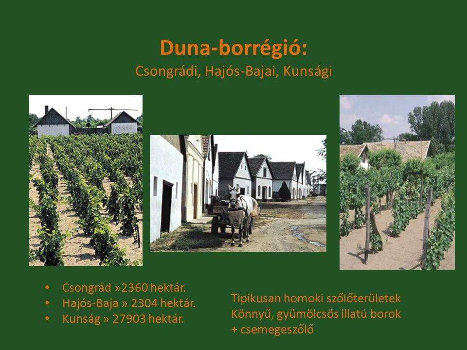 Duna-borrégió: Csongrádi, Hajós-Bajai, Kunsági Csongrád »2360 hektár. Hajós-Baja » 2304 hektár. Kunság » 27903 hektár. Tipikusan homoki szőlőterületek