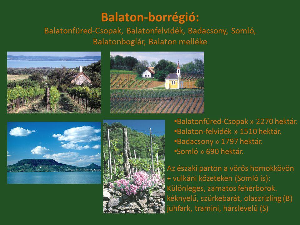 Balaton-borrégió: Balatonfüred-Csopak, Balatonfelvidék, Badacsony, Somló, Balatonboglár, Balaton melléke Balatonfüred-Csopak » 2270 hektár. Balaton-fe