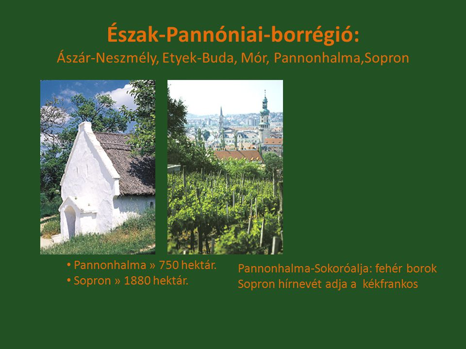 Pannonhalma » 750 hektár. Sopron » 1880 hektár. Észak-Pannóniai-borrégió: Ászár-Neszmély, Etyek-Buda, Mór, Pannonhalma,Sopron Pannonhalma-Sokoróalja: