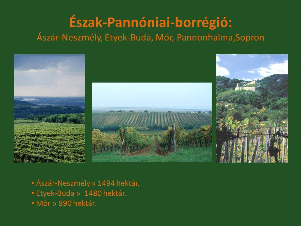Észak-Pannóniai-borrégió: Ászár-Neszmély, Etyek-Buda, Mór, Pannonhalma,Sopron Ászár-Neszmély » 1494 hektár. Etyek-Buda » 1480 hektár. Mór » 890 hektár