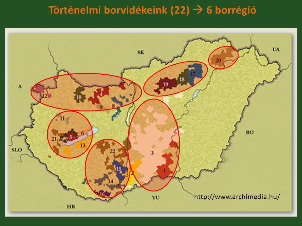 Történelmi borvidékeink (22)  6 borrégió Borvidékek » 1. Csongrád » 2. Hajós- Baja » 3. Kunság » 4. Ászár- Neszmély » 5. Badacsony » 6. Balatonfüred