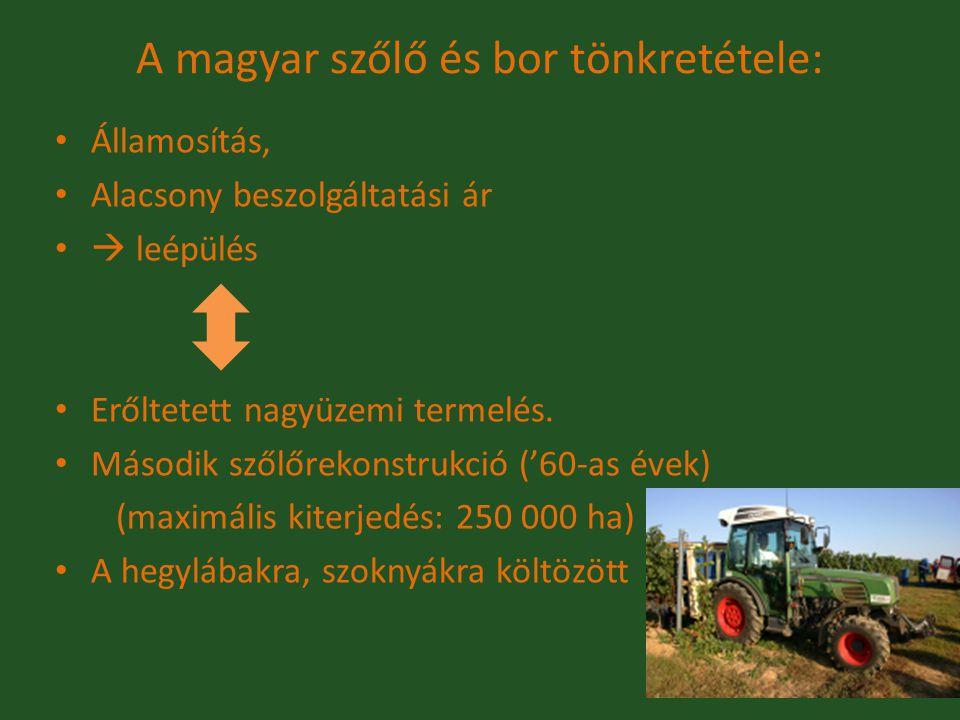 A magyar szőlő és bor tönkretétele: Államosítás, Alacsony beszolgáltatási ár  leépülés Erőltetett nagyüzemi termelés. Második szőlőrekonstrukció ('60