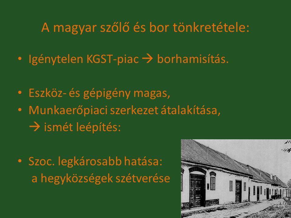 A magyar szőlő és bor tönkretétele: Igénytelen KGST-piac  borhamisítás. Eszköz- és gépigény magas, Munkaerőpiaci szerkezet átalakítása,  ismét leépí