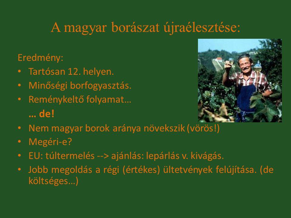 Eredmény: Tartósan 12. helyen. Minőségi borfogyasztás. Reménykeltő folyamat… … de! Nem magyar borok aránya növekszik (vörös!) Megéri-e? EU: túltermelé