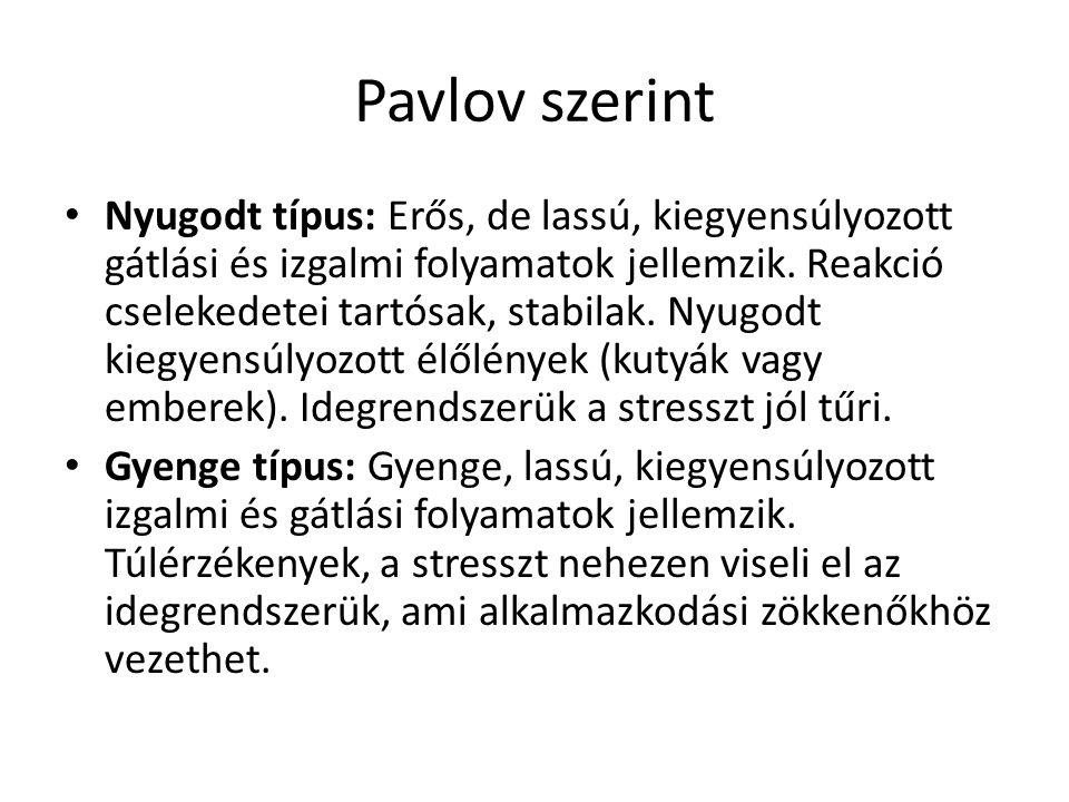 Pavlov szerint Nyugodt típus: Erős, de lassú, kiegyensúlyozott gátlási és izgalmi folyamatok jellemzik. Reakció cselekedetei tartósak, stabilak. Nyugo