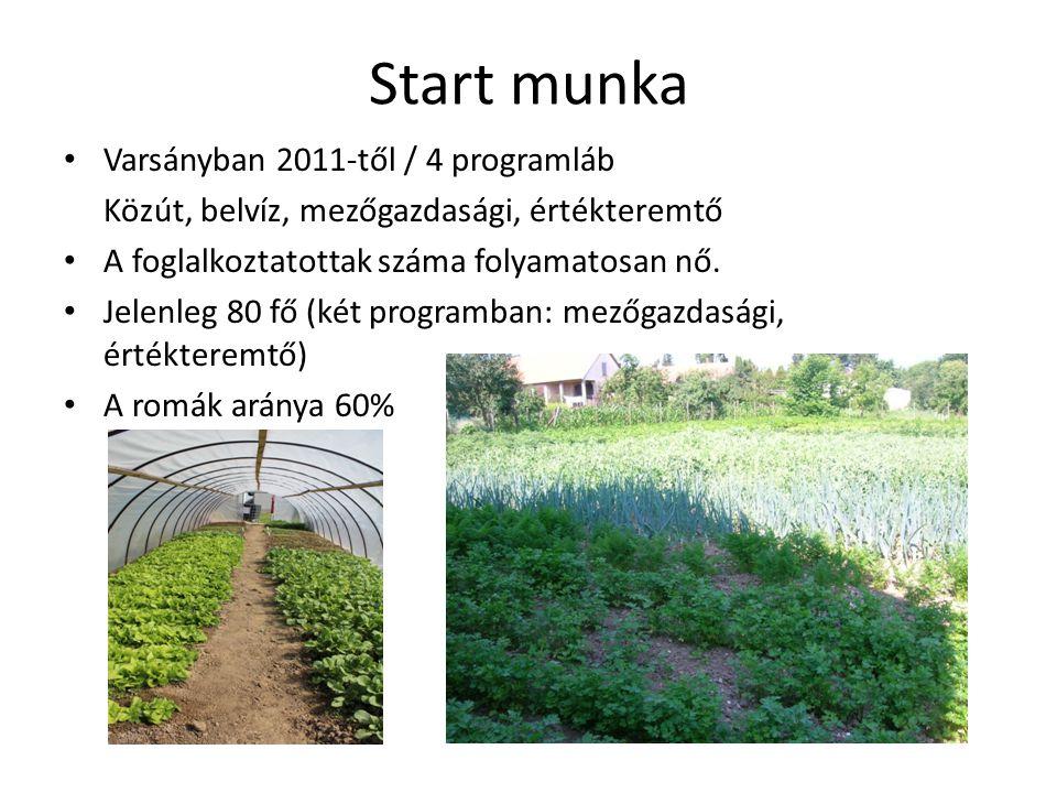 Start munka Varsányban 2011-től / 4 programláb Közút, belvíz, mezőgazdasági, értékteremtő A foglalkoztatottak száma folyamatosan nő.