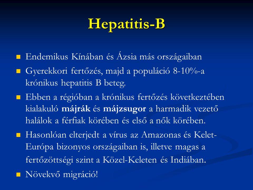 Hepatitis-B Endemikus Kínában és Ázsia más országaiban Gyerekkori fertőzés, majd a populáció 8-10%-a krónikus hepatitis B beteg. Ebben a régióban a kr