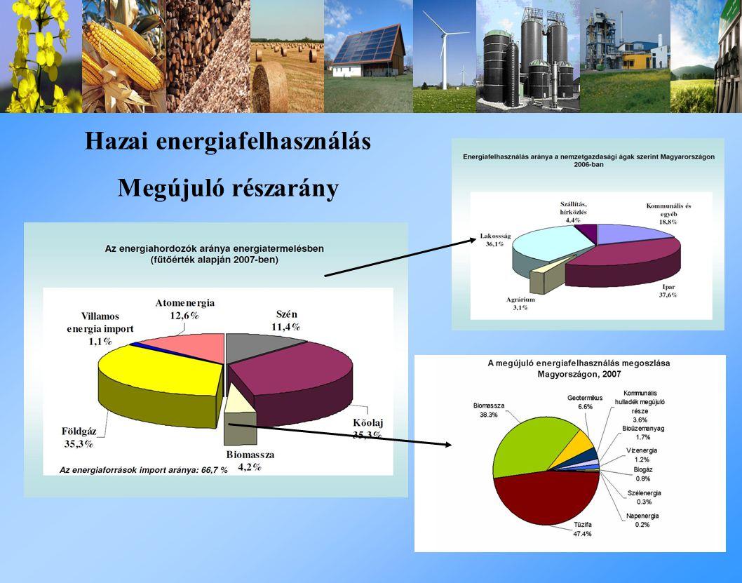 Hazai energiafelhasználás Megújuló részarány