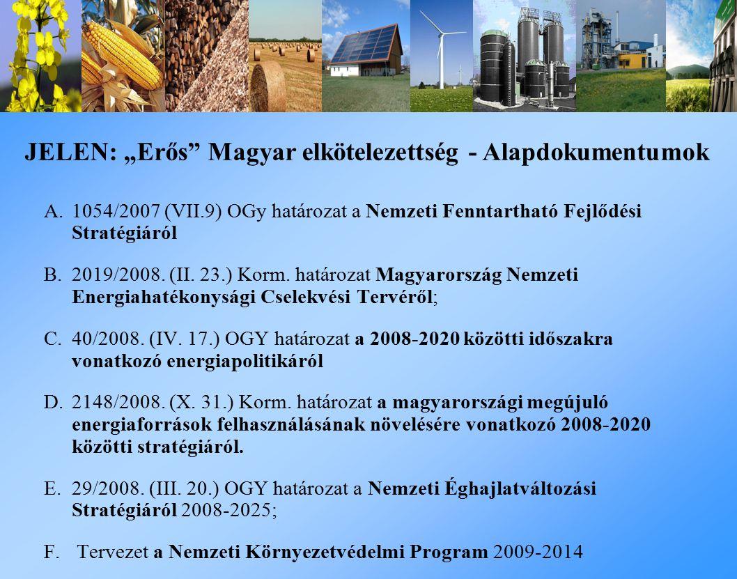 A.1054/2007 (VII.9) OGy határozat a Nemzeti Fenntartható Fejlődési Stratégiáról B.2019/2008.
