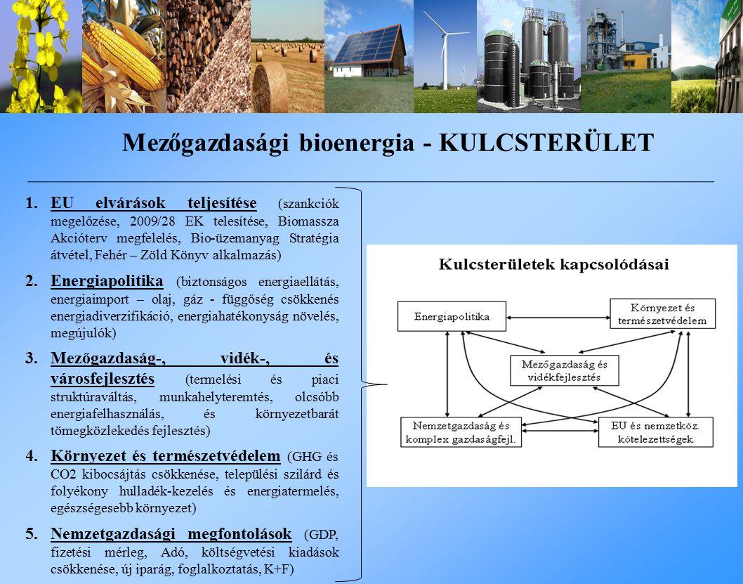 1.EU elvárások teljesítése (szankciók megelőzése, 2009/28 EK telesítése, Biomassza Akcióterv megfelelés, Bio-üzemanyag Stratégia átvétel, Fehér – Zöld Könyv alkalmazás) 2.Energiapolitika (biztonságos energiaellátás, energiaimport – olaj, gáz - függőség csökkenés energiadiverzifikáció, energiahatékonyság növelés, megújulók) 3.