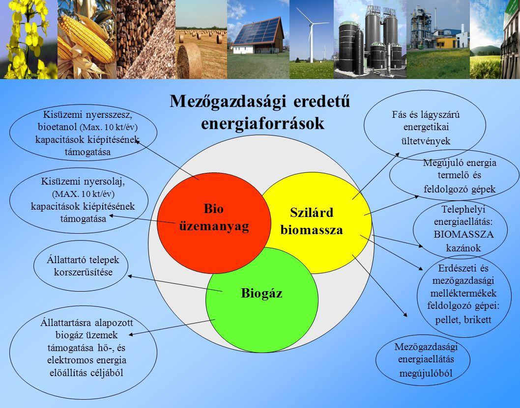 Mezőgazdasági eredetű energiaforrások Szilárd biomassza Biogáz Bio üzemanyag Fás és lágyszárú energetikai ültetvények Megújuló energia termelő és feldolgozó gépek Telephelyi energiaellátás: BIOMASSZA kazánok Mezőgazdasági energiaellátás megújulóból Kisüzemi nyersszesz, bioetanol (Max.