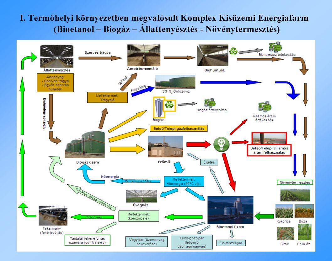 I. Termőhelyi környezetben megvalósult Komplex Kisüzemi Energiafarm (Bioetanol – Biogáz – Állattenyésztés - Növénytermesztés)