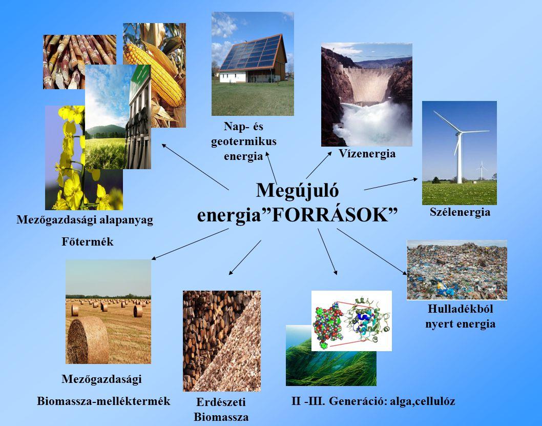 Megújuló energia FORRÁSOK Nap- és geotermikus energia Vízenergia Erdészeti Biomassza Szélenergia Hulladékból nyert energia Mezőgazdasági Biomassza-melléktermék Mezőgazdasági alapanyag Főtermék II -III.
