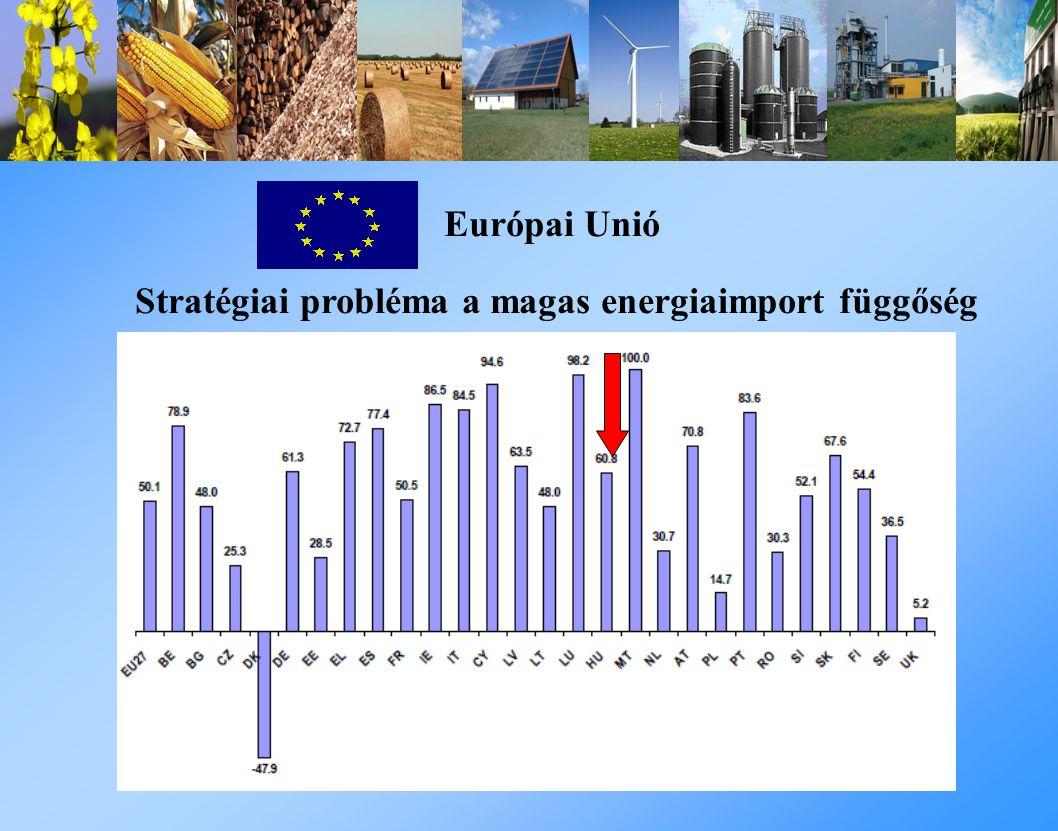 Európai Unió Stratégiai probléma a magas energiaimport függőség