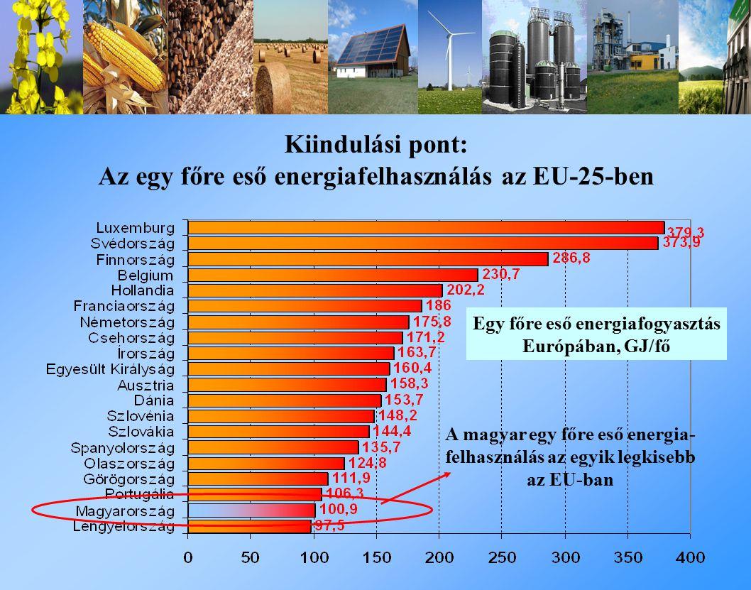 Kiindulási pont: Az egy főre eső energiafelhasználás az EU-25-ben Egy főre eső energiafogyasztás Európában, GJ/fő A magyar egy főre eső energia- felhasználás az egyik legkisebb az EU-ban