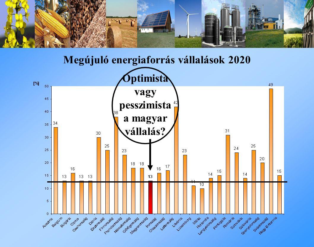 Optimista vagy pesszimista a magyar vállalás? Megújuló energiaforrás vállalások 2020