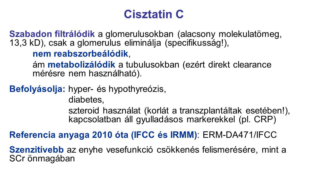 Szabadon filtrálódik a glomerulusokban (alacsony molekulatömeg, 13,3 kD), csak a glomerulus eliminálja (specifikusság!), nem reabszorbeálódik, ám meta
