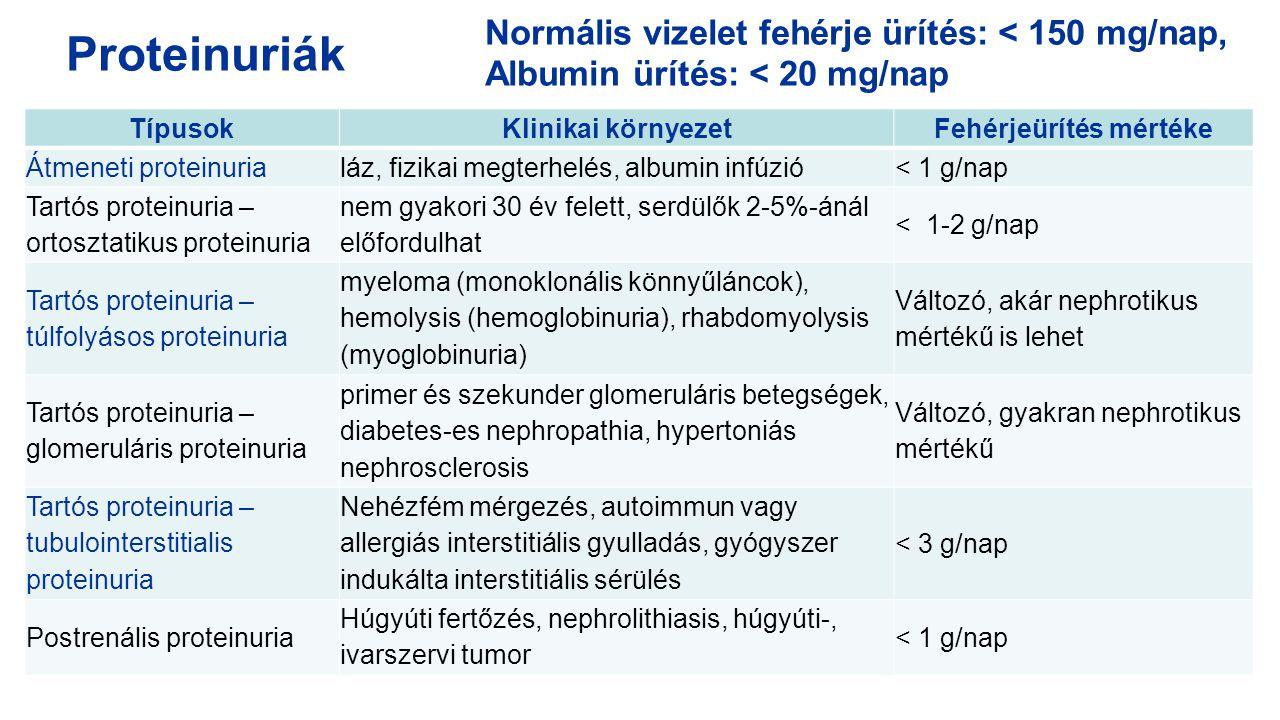 TípusokKlinikai környezetFehérjeürítés mértéke Átmeneti proteinurialáz, fizikai megterhelés, albumin infúzió< 1 g/nap Tartós proteinuria – ortosztatik