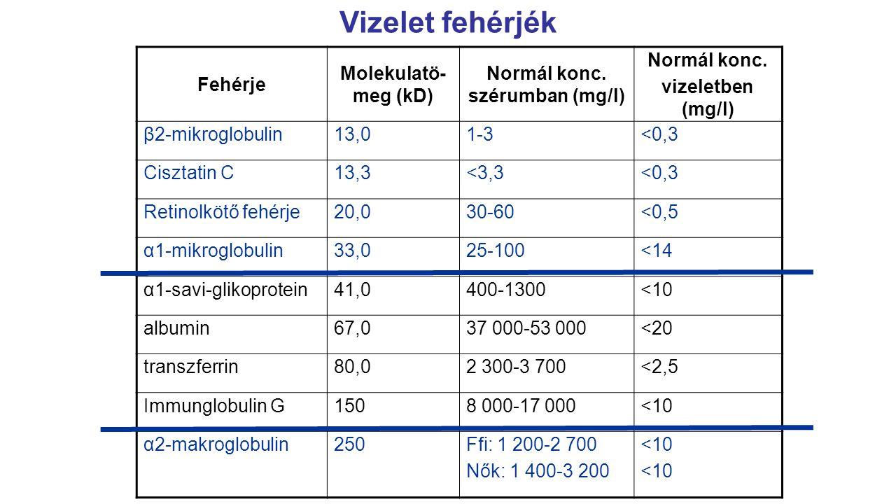 Vizelet fehérjék Fehérje Molekulatö- meg (kD) Normál konc. szérumban (mg/l) Normál konc. vizeletben (mg/l) β2-mikroglobulin13,01-3<0,3 Cisztatin C13,3