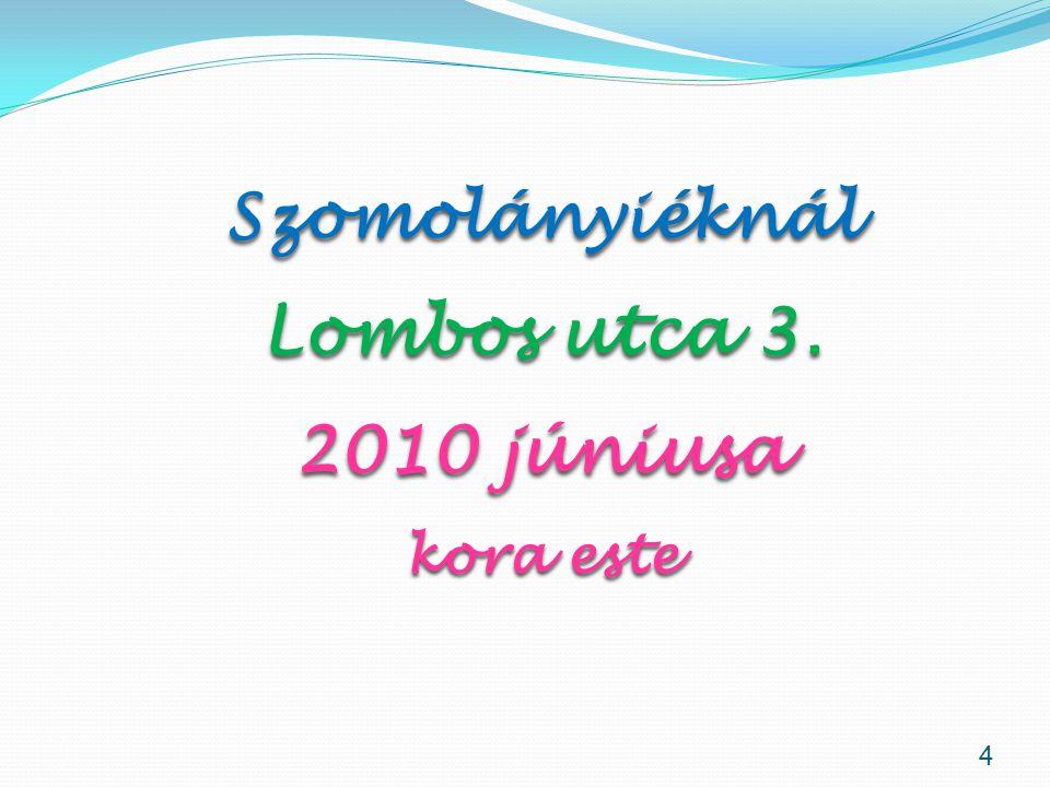 35 Két karodban a halálon, mint egy álmon átesem 2012. február 13. Dr. Muszbek Katalin