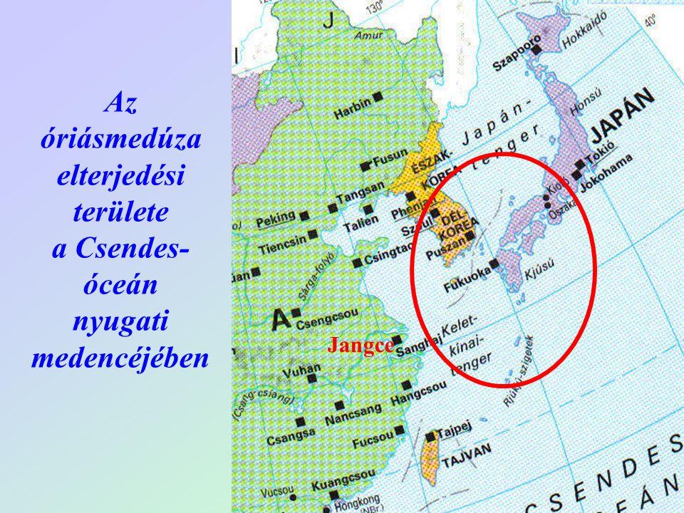 Jangce Az óriásmedúza elterjedési területe a Csendes- óceán nyugati medencéjében