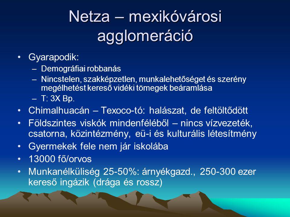Netza – mexikóvárosi agglomeráció Gyarapodik: –Demográfiai robbanás –Nincstelen, szakképzetlen, munkalehetőséget és szerény megélhetést kereső vidéki tömegek beáramlása –T: 3X Bp.
