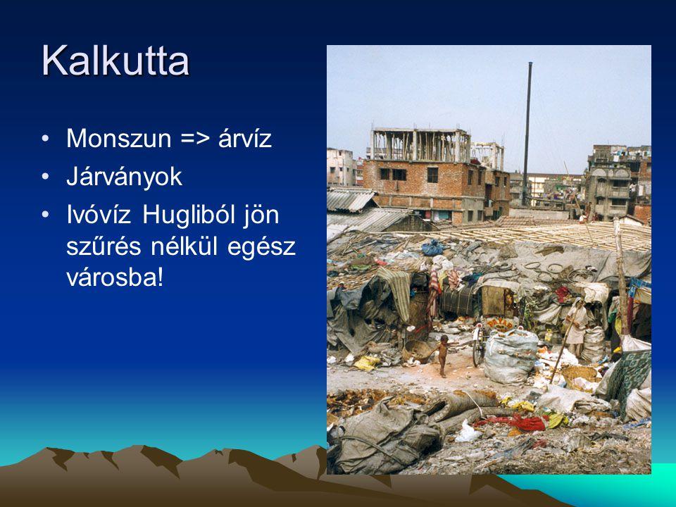 Kalkutta Monszun => árvíz Járványok Ivóvíz Hugliból jön szűrés nélkül egész városba!