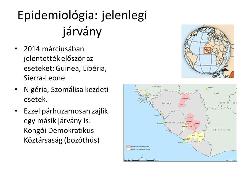 Epidemiológia: jelenlegi járvány 2014 márciusában jelentették először az eseteket: Guinea, Libéria, Sierra-Leone Nigéria, Szomálisa kezdeti esetek.